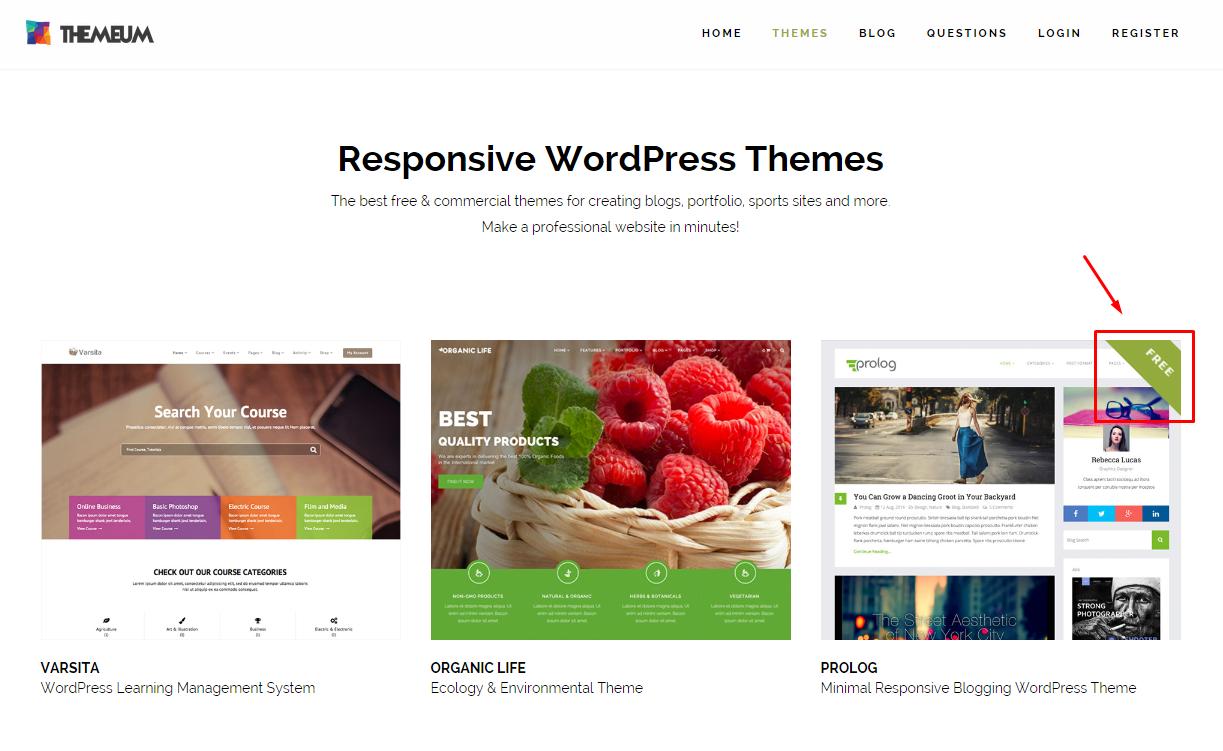 Ücretsiz WordPress Temaları -1